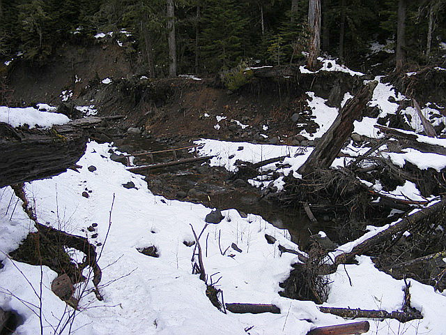 Bridge over Kautz creek
