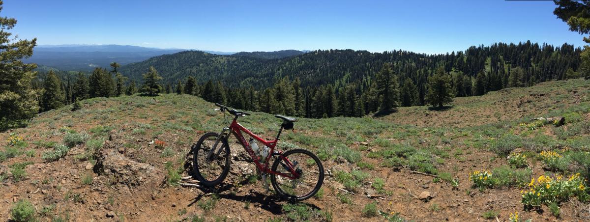 Biking back
