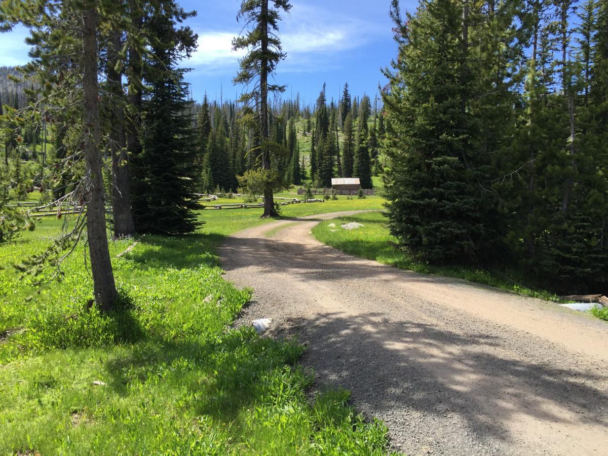 Road to Trailhead