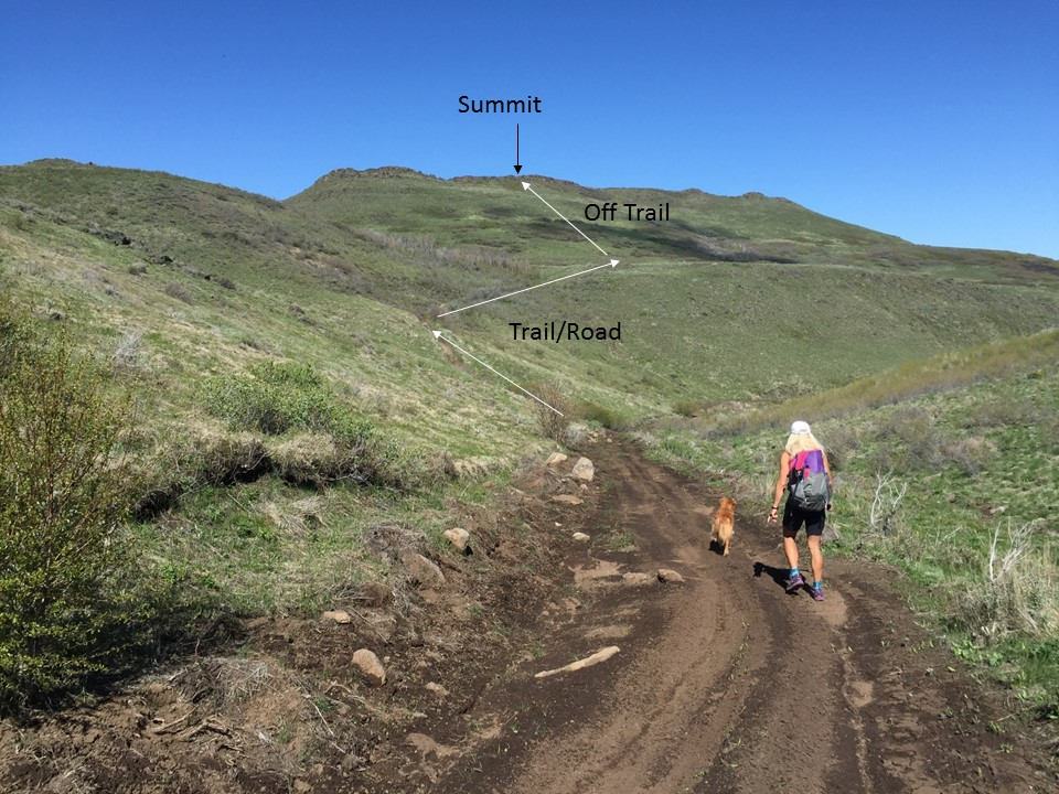 Final trail to summit