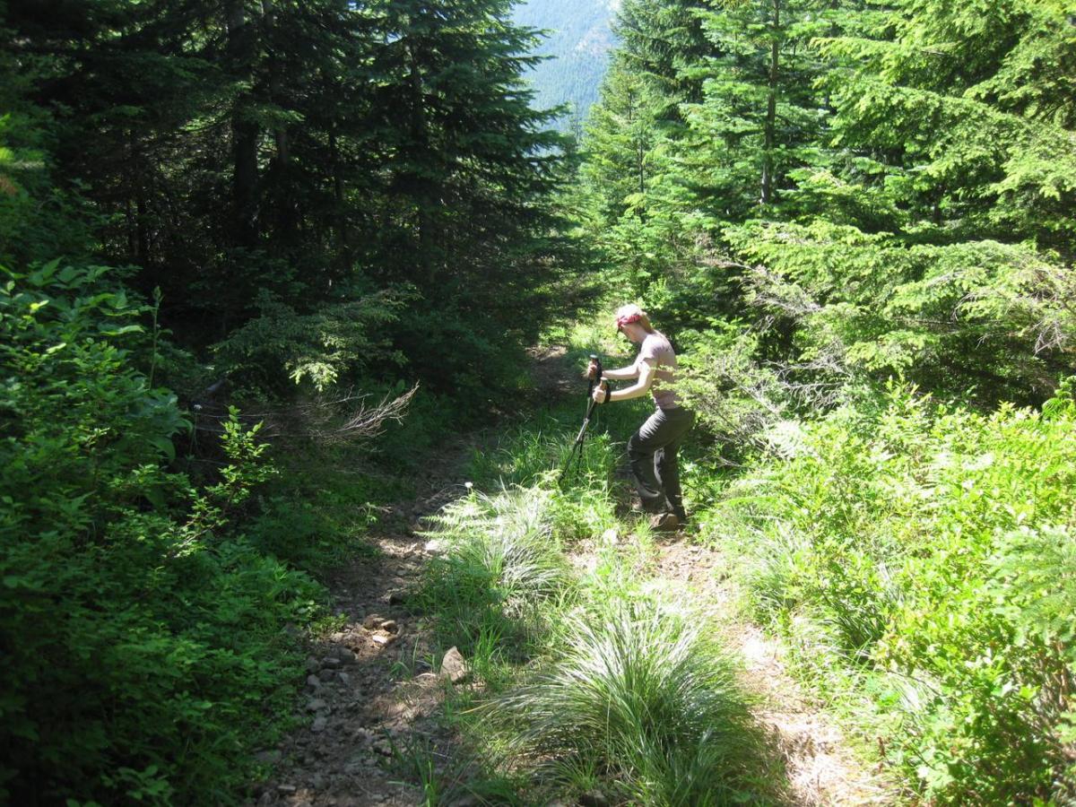 K7TAY climbing down jeep trail
