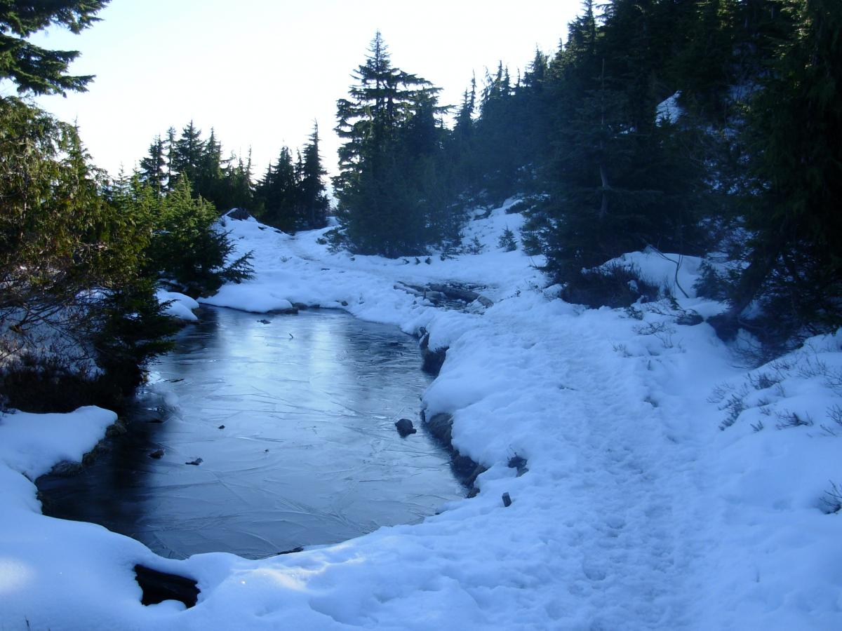 packed snow and ice on trail