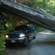 Road log