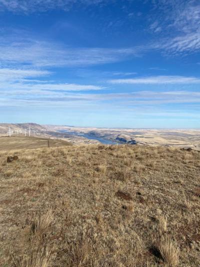John Day Dam from Haystack