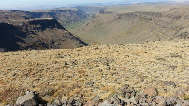 Big Indian Gorge from Steens Mountain Loop Road