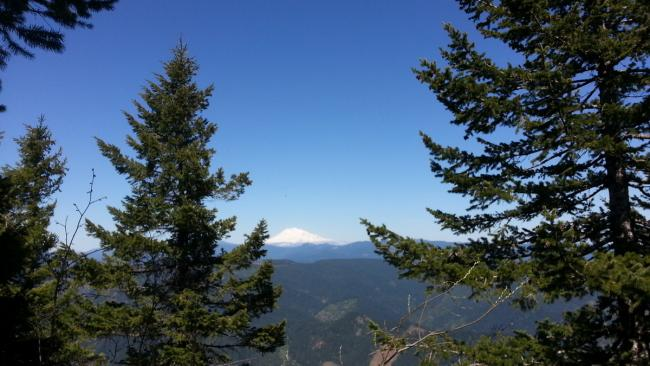 Mount Adams view