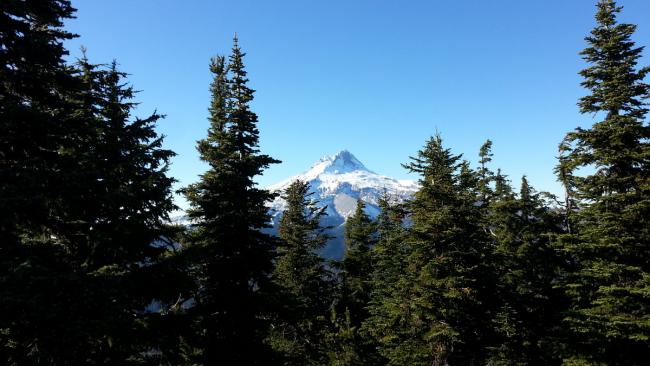 View of Mount Hood from 6001 summit