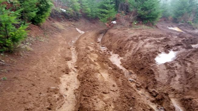 Some kind of ruts!
