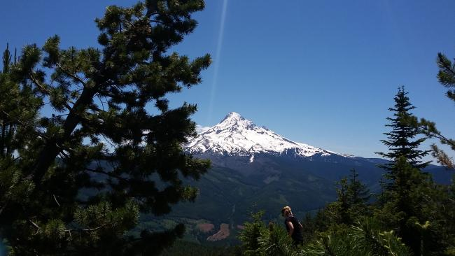 Mount Hood view from Lost Lake Butte summit