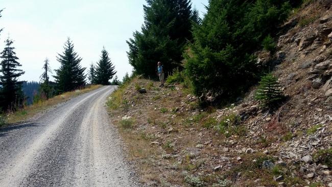 Abandoned road heading upwards to right