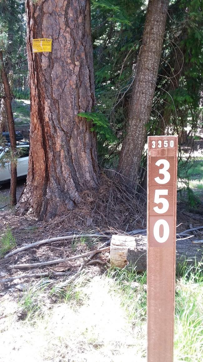 Road 350 and mining claim sign