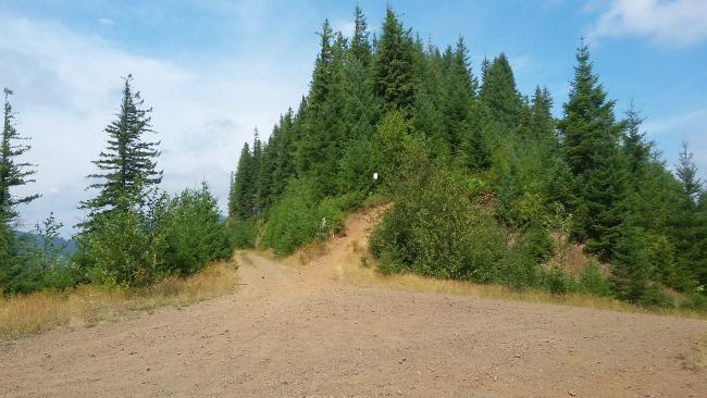 Motorcycle trail leading to the summit of 2814