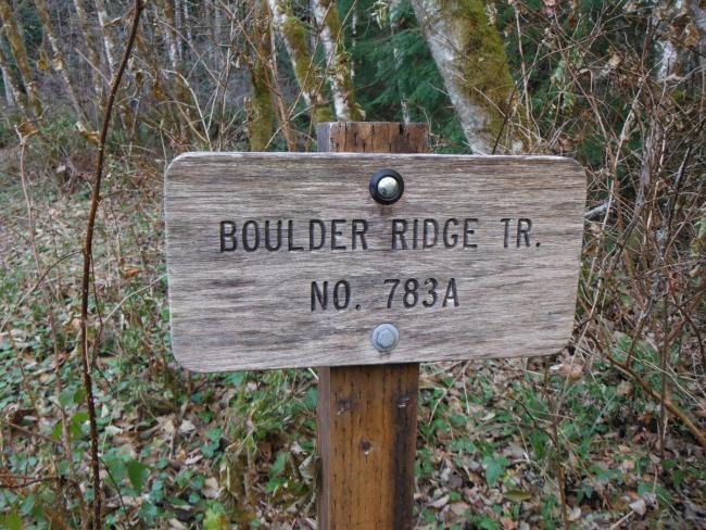 Boulder Ridge Trail #783A