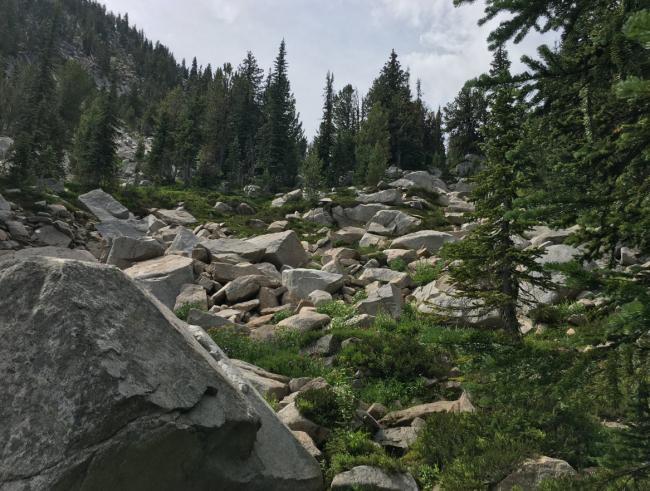 Boulder fields in Angell Basin