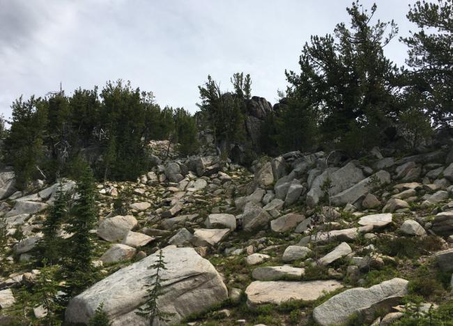 Boulder path to ridge