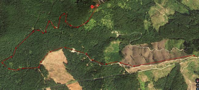 Satellite View with trail annotations