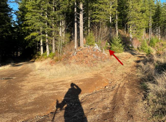 Red arrow for elusive trail