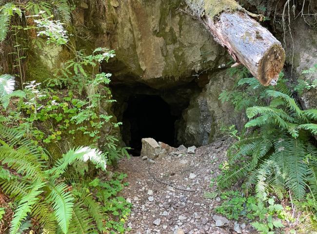 Bonanza mine entrance