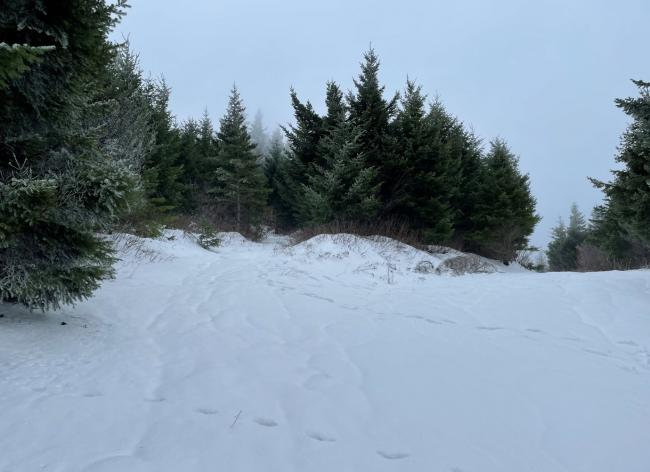 veer left near summit
