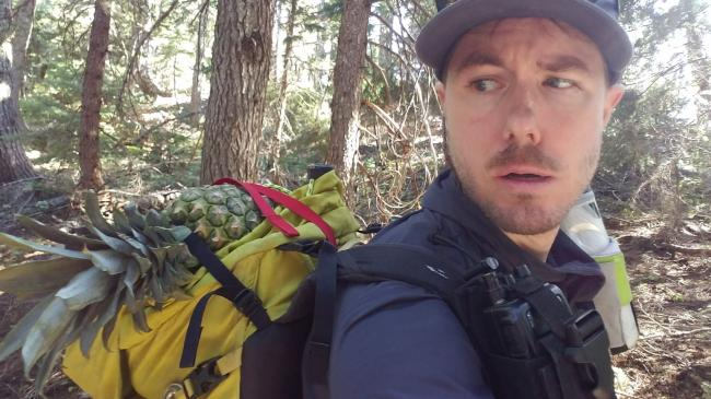 Hiking with a pineapple