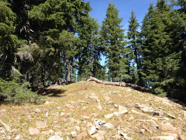Miller Mt. Summit