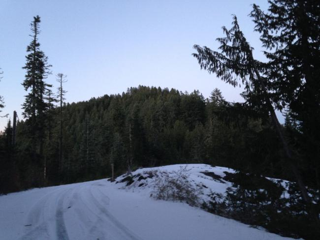Outerson Summit from near saddle in NF2233