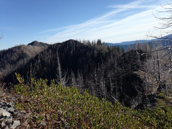 Unnamed peak, Knob Peak, Schreiner Peak at start of cross country