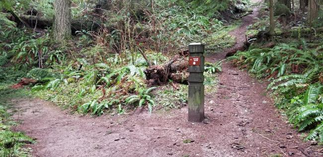 First trail marker - can go left, or straight is a little shorter