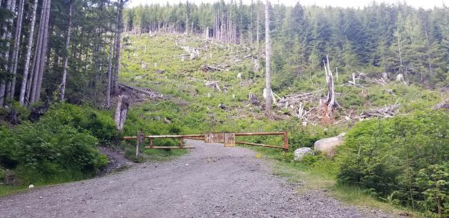 Gate at start of road hike - NF-210
